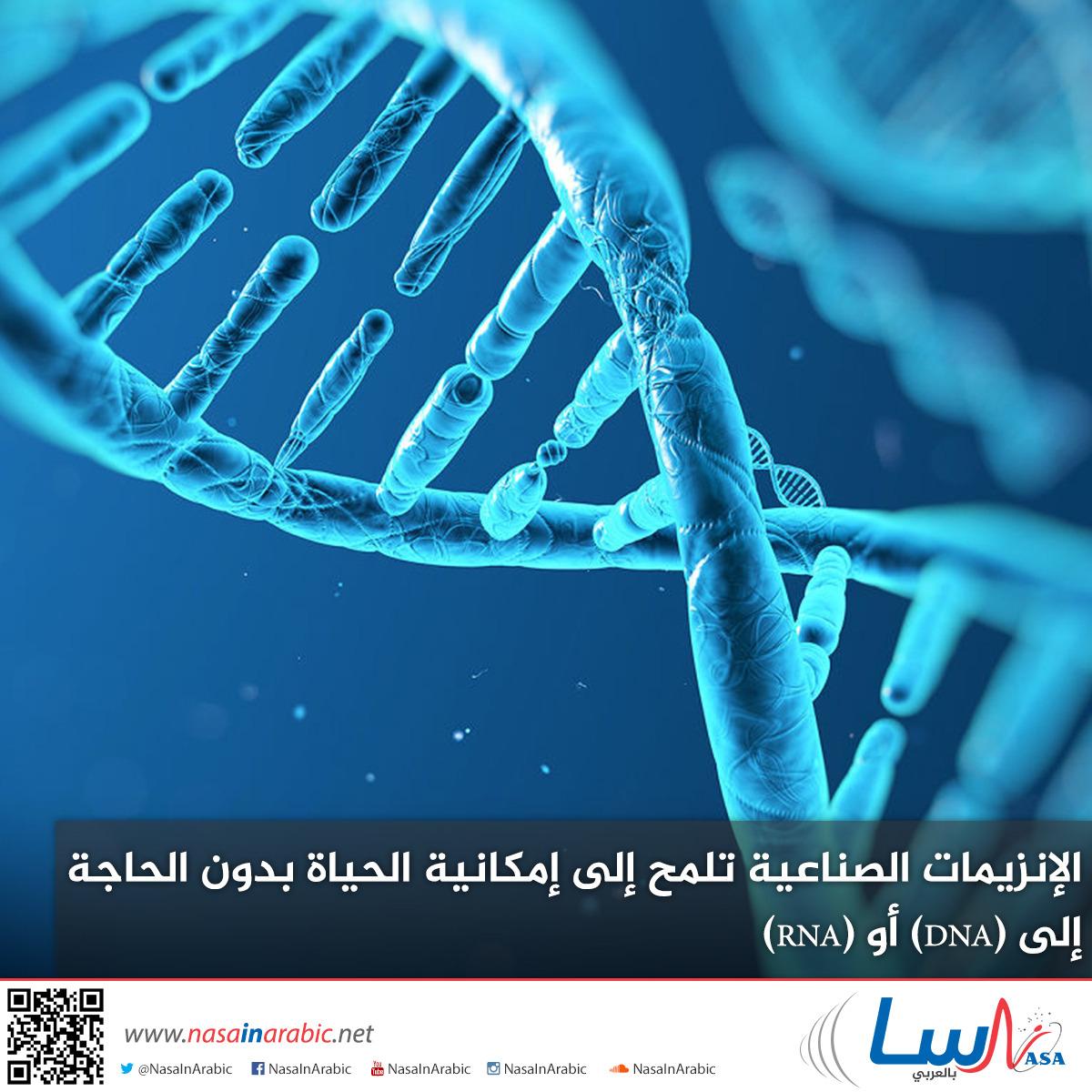 الإنزيمات الصناعية تلمح إلى إمكانية الحياة بدون الحاجة إلى (DNA) أو (RNA)