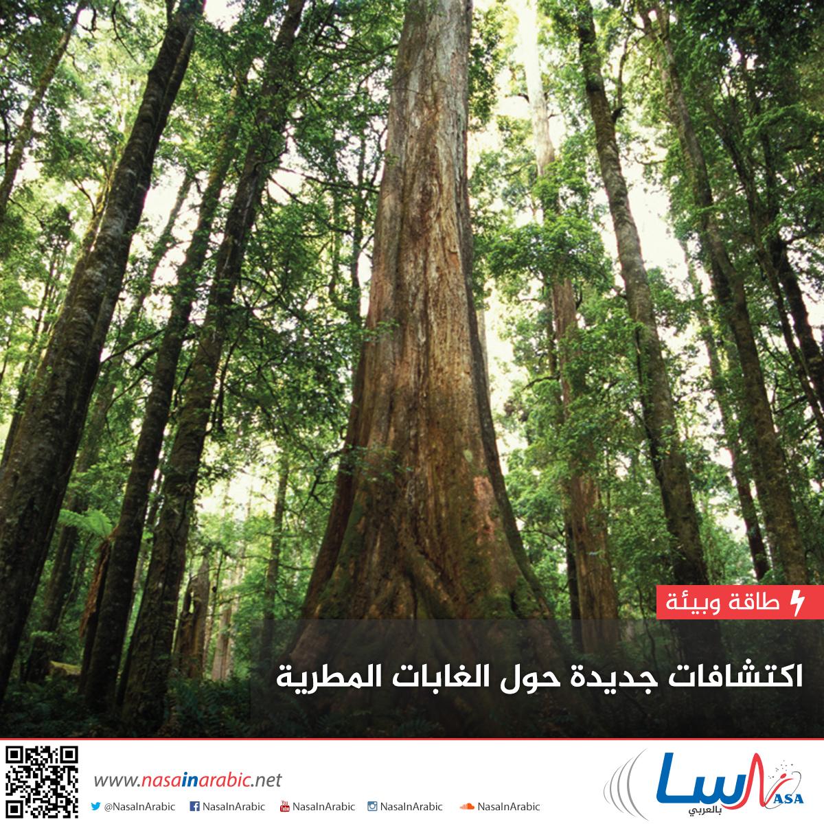 اكتشافات جديدة حول الغابات المطرية