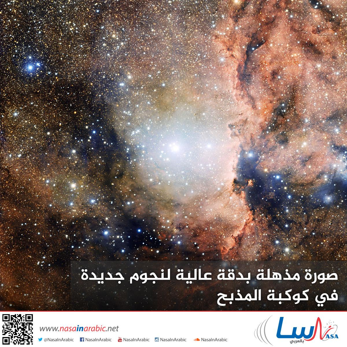 صورة مذهلة بدقة عالية لنجوم جديدة في كوكبة المذبح