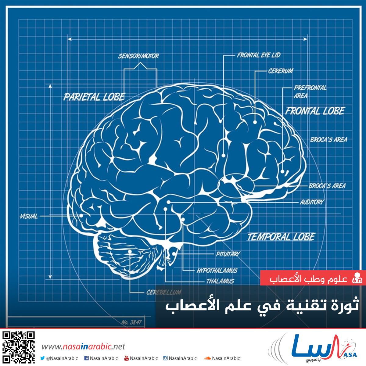 ثورة تقنية في علم الأعصاب