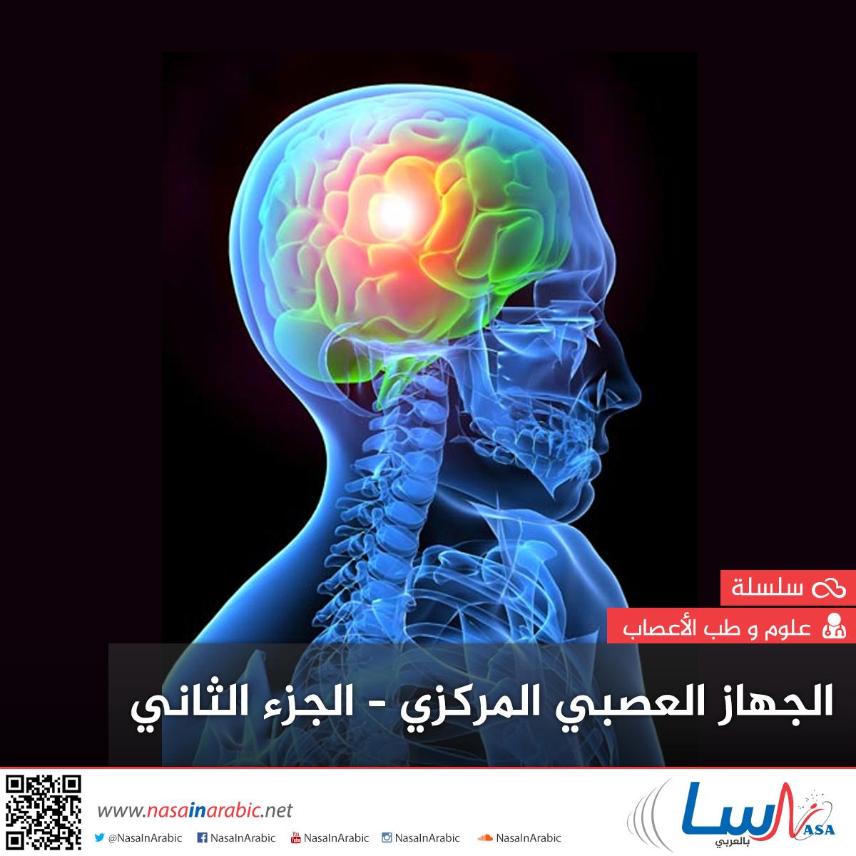 الجهاز العصبي المركزي-الجزء الثاني