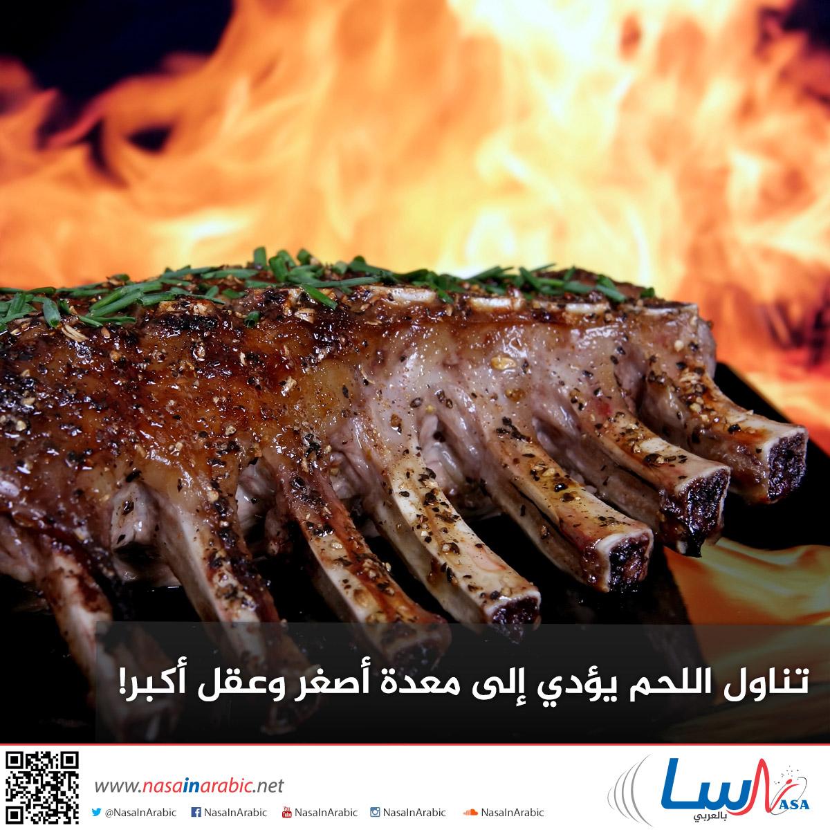 تناول اللحم يؤدي إلى معدة أصغر وعقل أكبر!