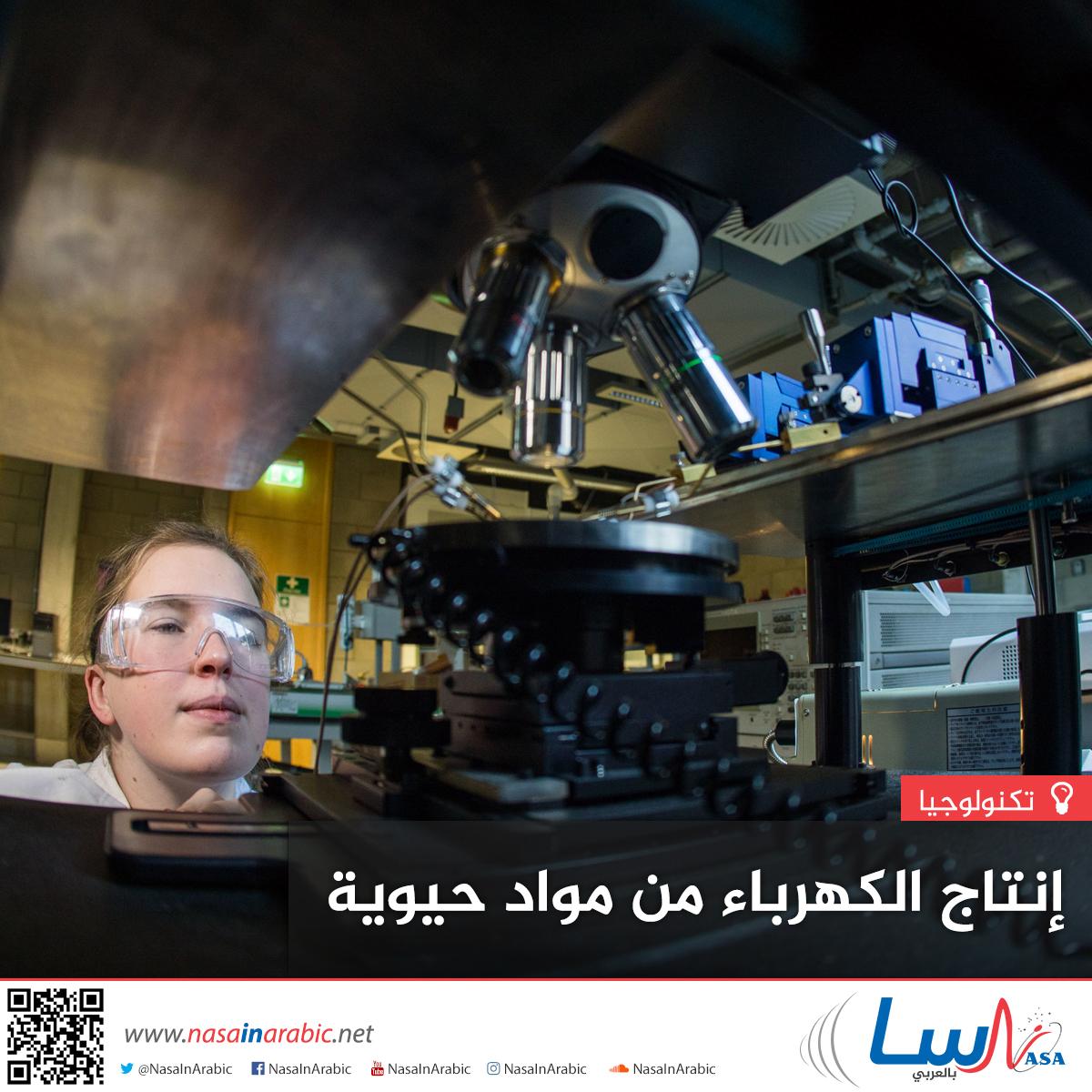 إنتاج الكهرباء من مواد حيوية