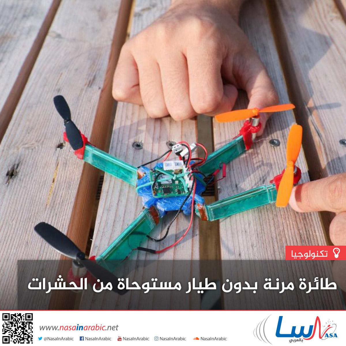 طائرة مرنة بدون طيار مستوحاة من الحشرات