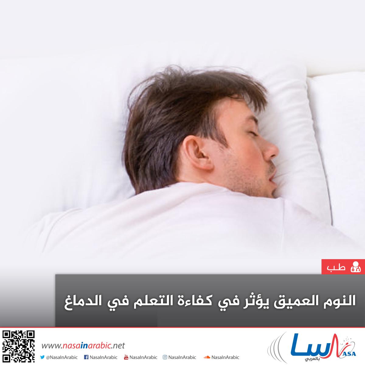 النوم العميق يؤثر في كفاءة التعلم في الدماغ