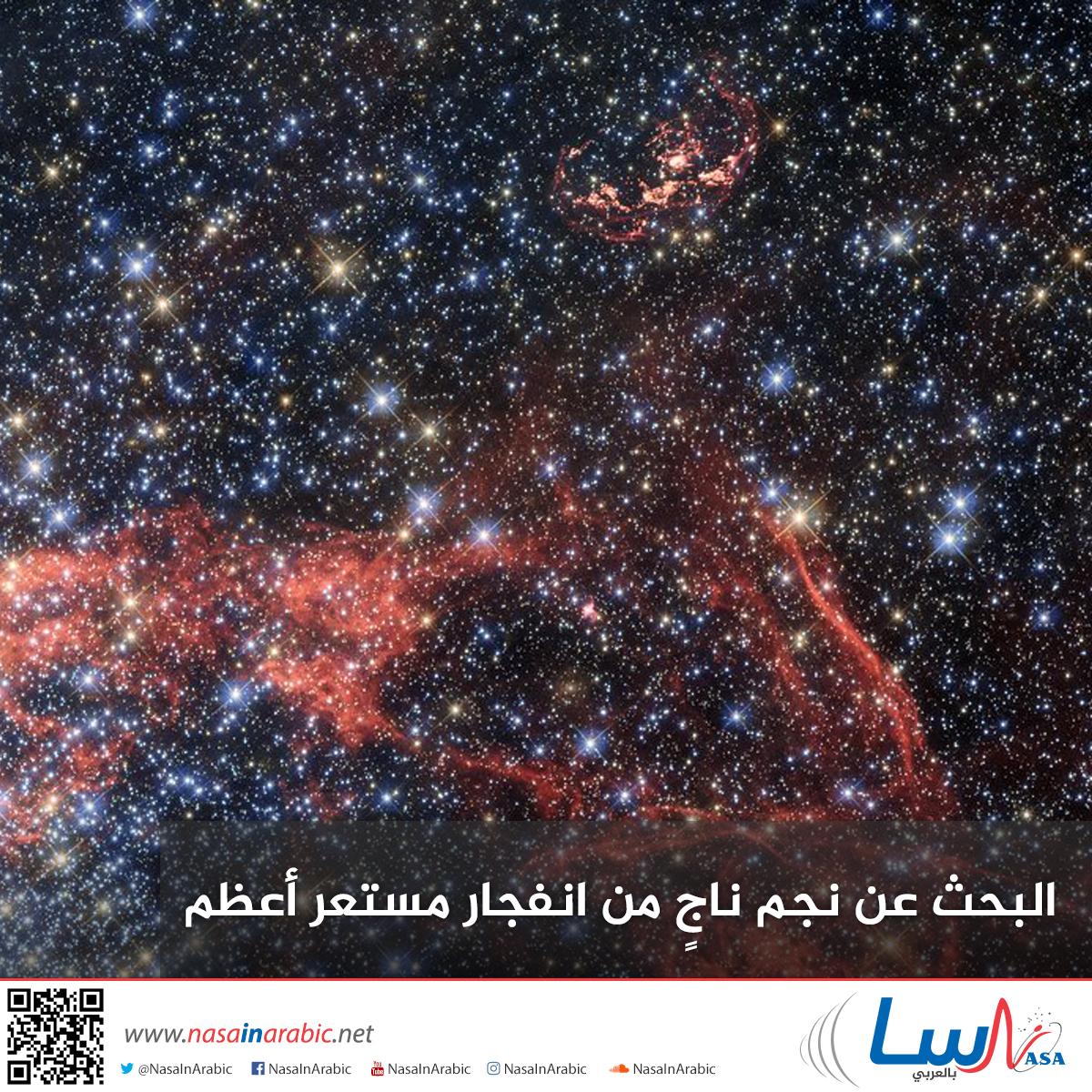 البحث عن نجم ناجٍ من انفجار مستعر أعظم