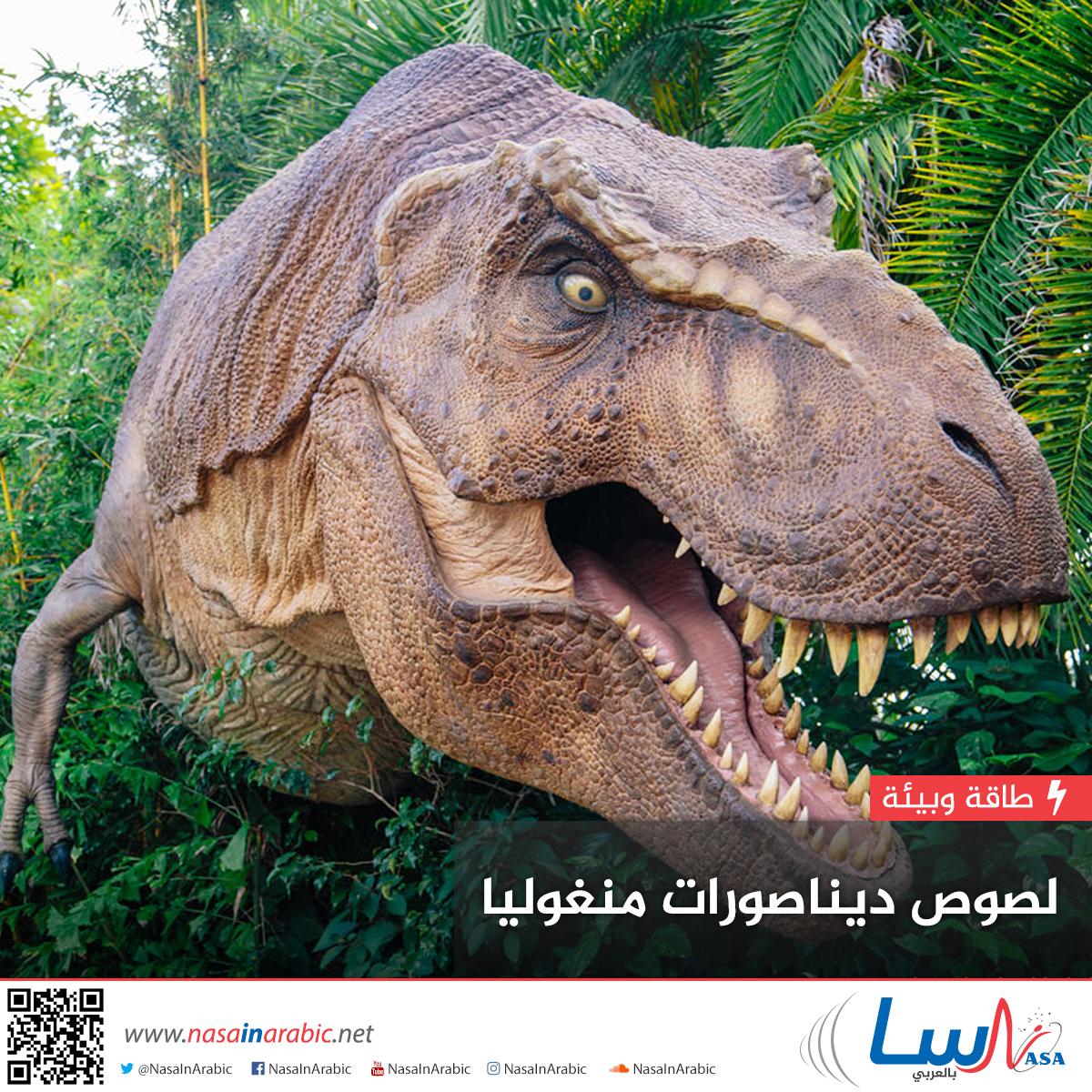 لصوص ديناصورات منغوليا