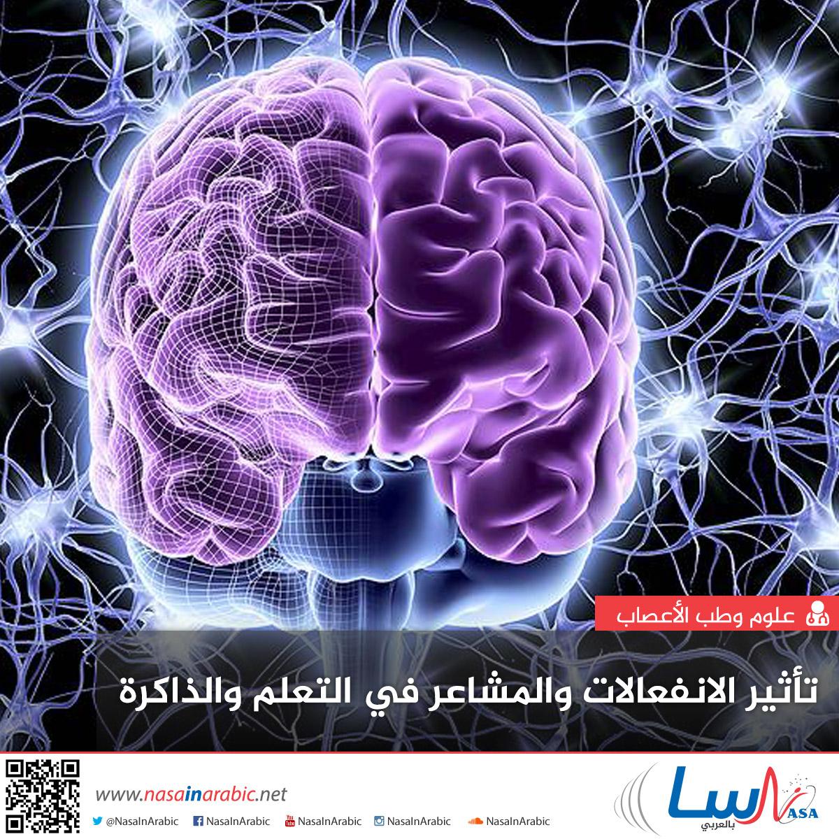 تأثير الانفعالات والمشاعر في التعلم والذاكرة