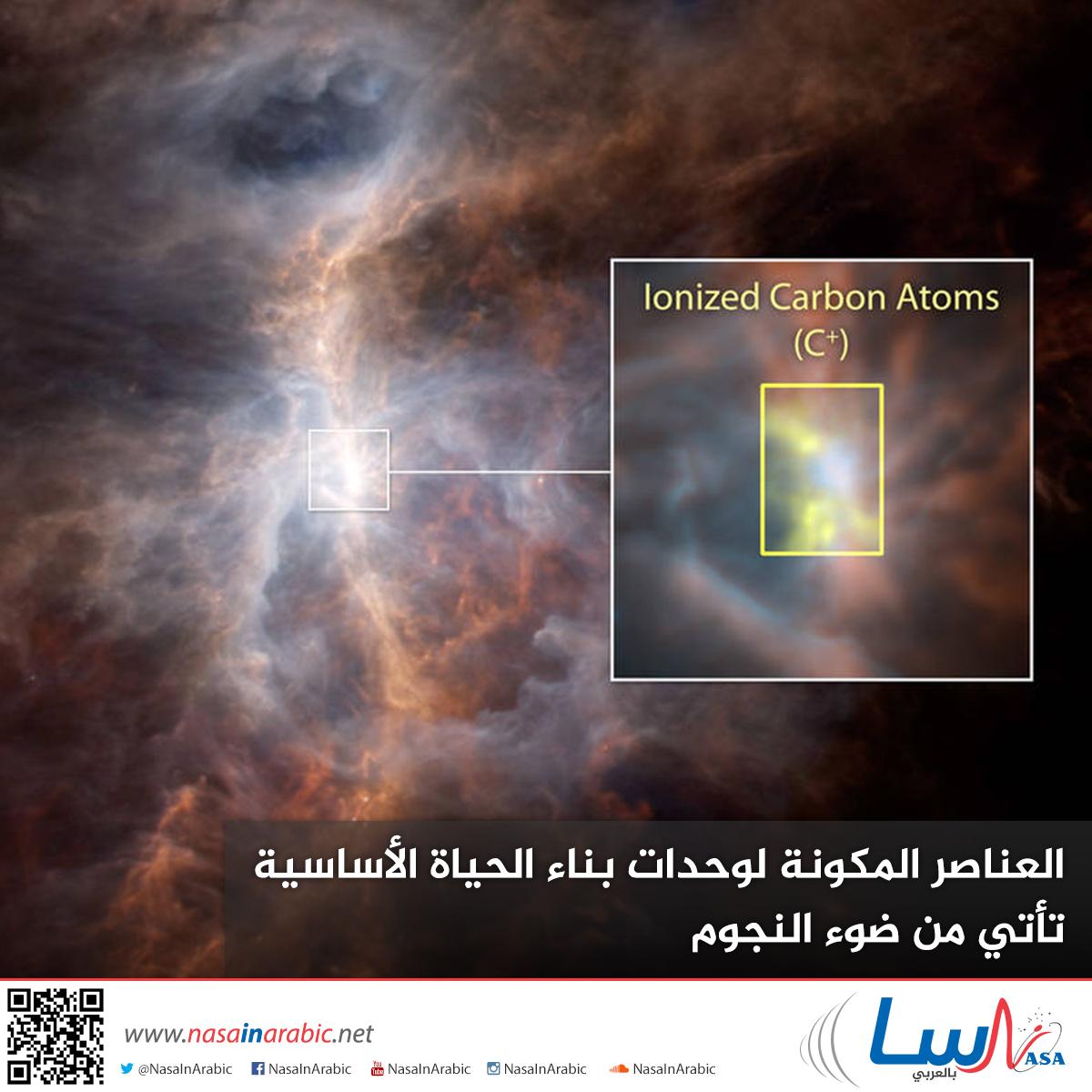 العناصر المكونة لوحدات بناء الحياة الأساسية تأتي من ضوء النجوم!