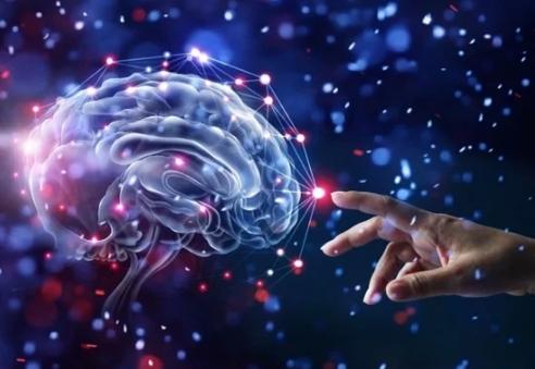 كيف تدمر المستويات المنخفضة من الأكسجين الدماغ؟