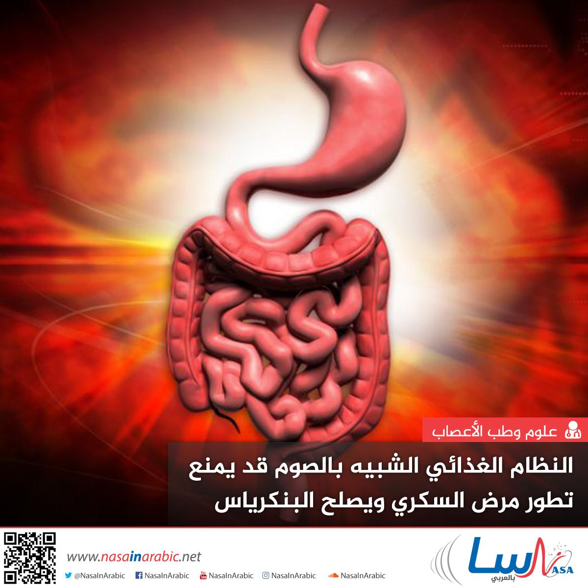 النظام الغذائي الشبيه بالصوم قد يمنع تطور مرض السكري ويصلح البنكرياس