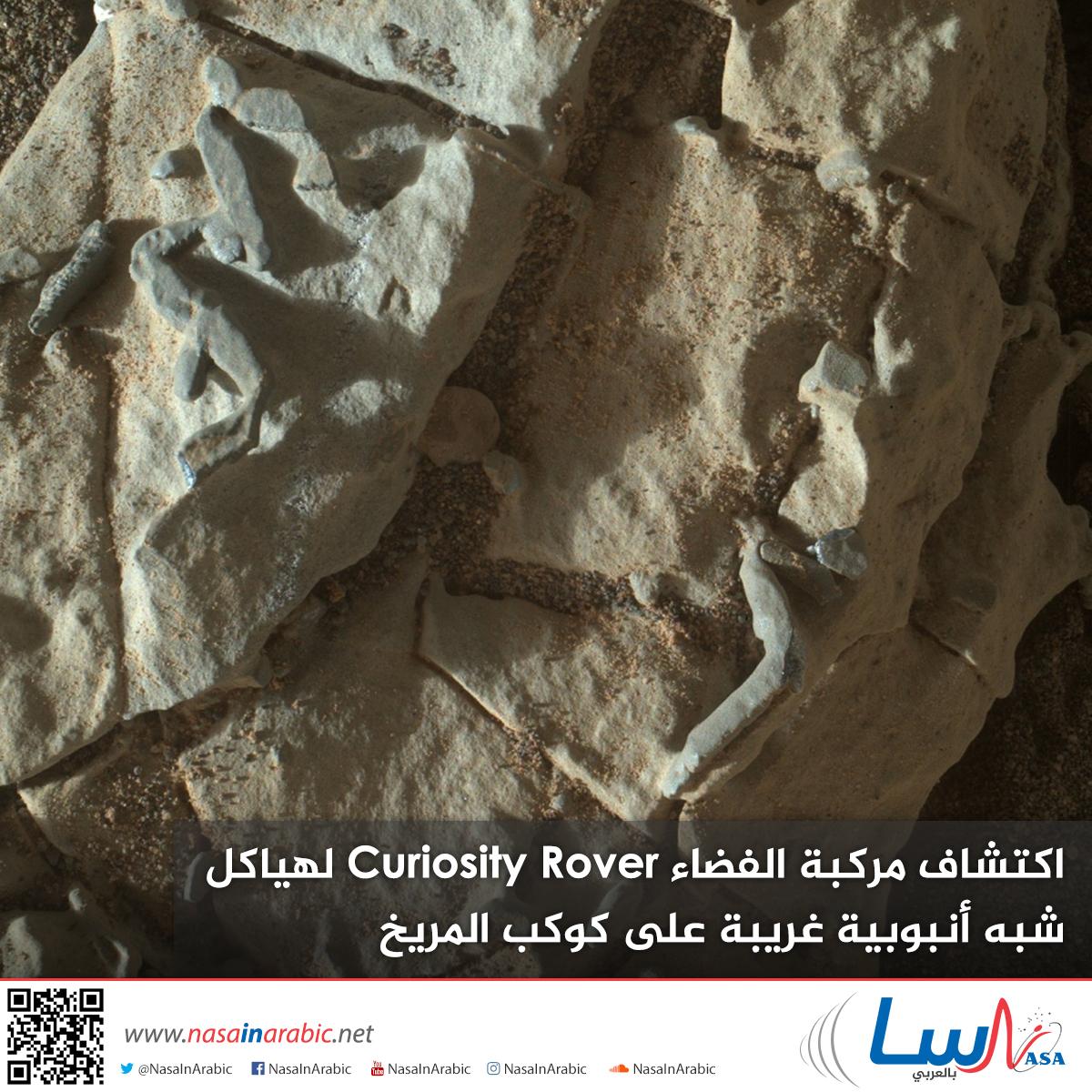 اكتشاف مركبة الفضاء Curiosity Rover لهياكل شبه أنبوبية غريبة على كوكب المريخ