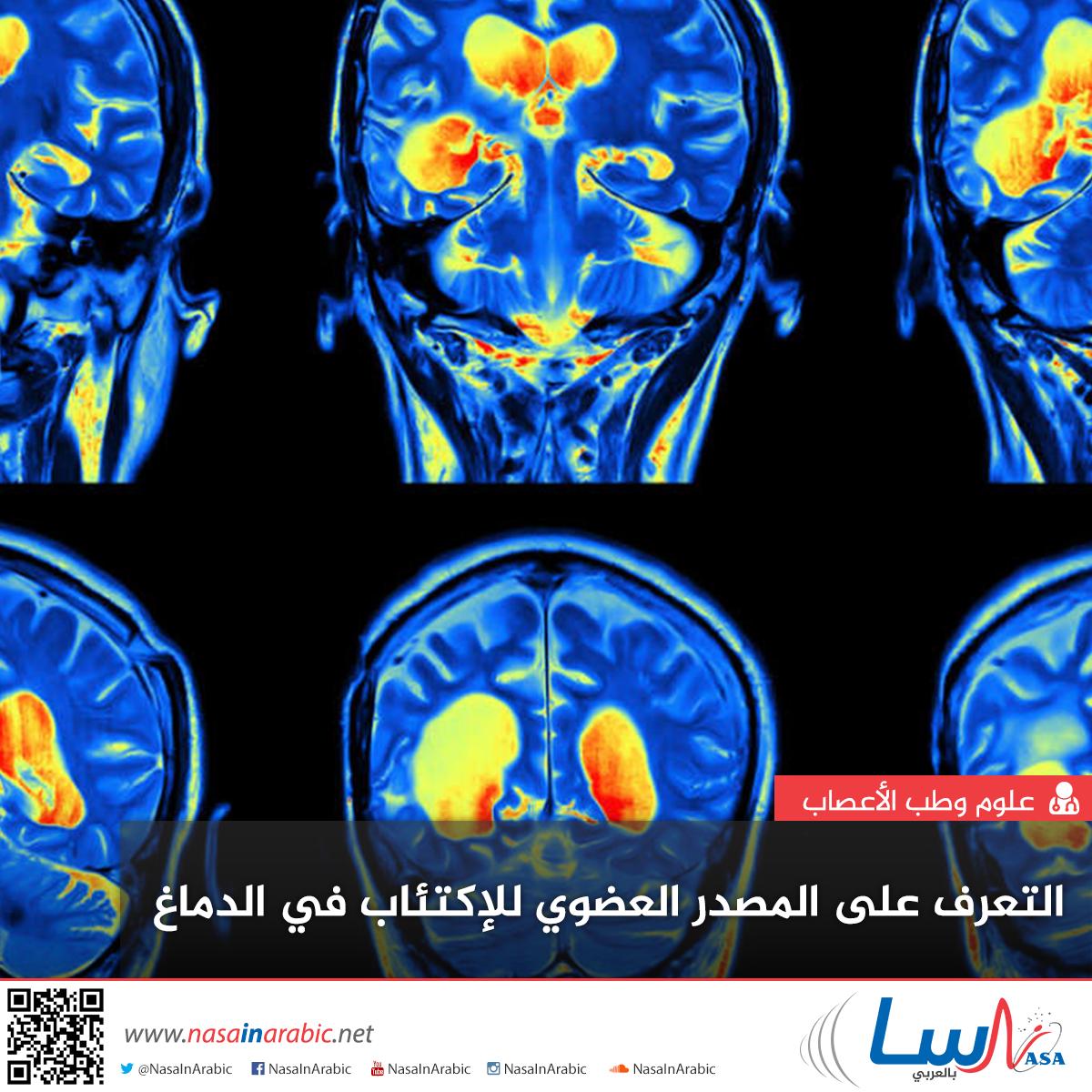 التعرف على المصدر العضوي للاكتئاب في الدماغ