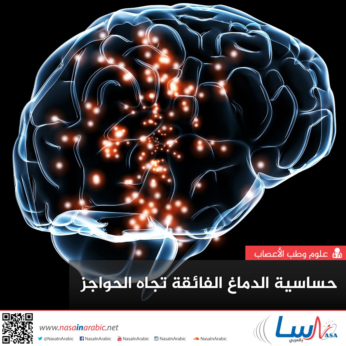 حساسية الدماغ الفائقة تجاه الحواجز والحدود المحيطة