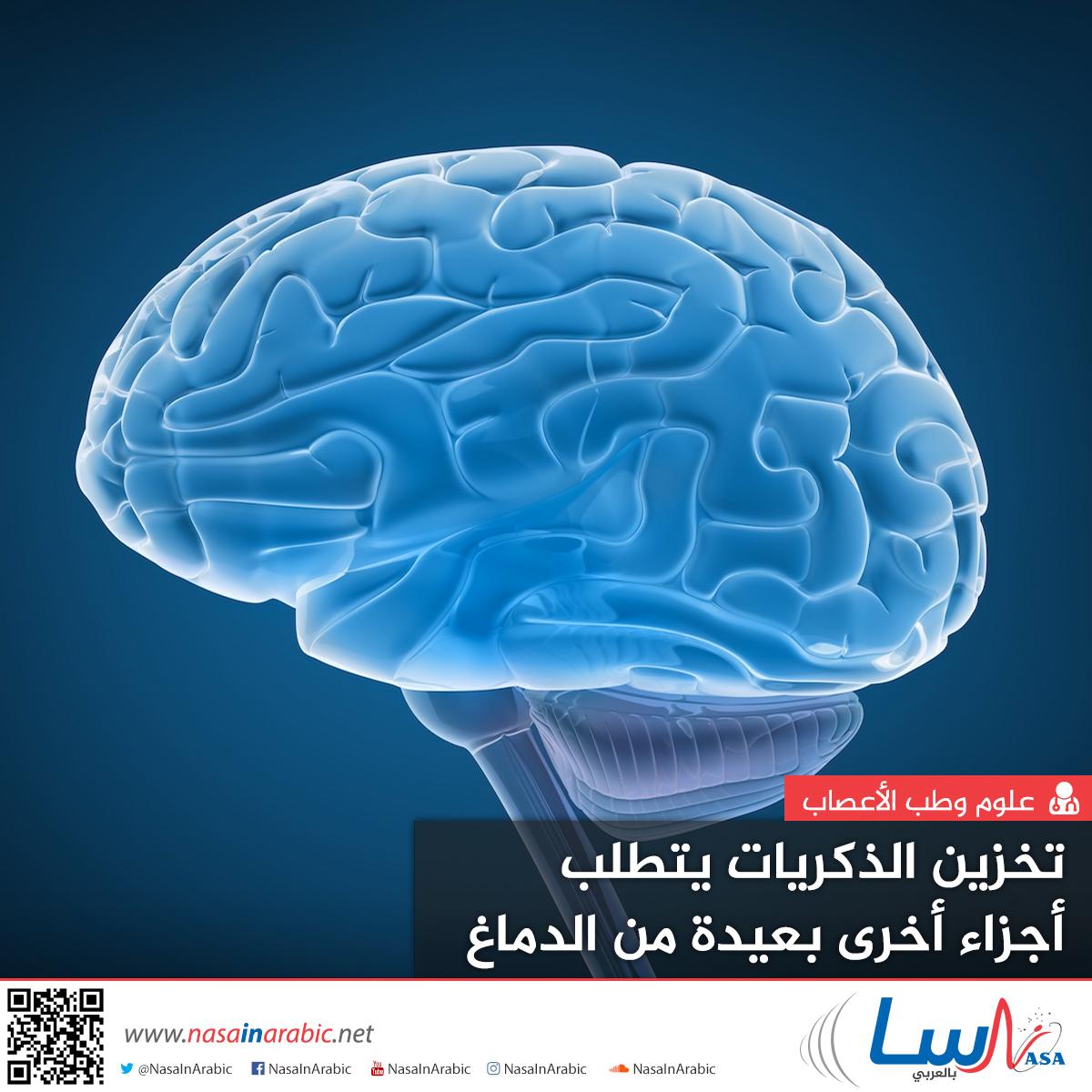 تخزين الذكريات يتطلب أجزاء أخرى بعيدة من الدماغ
