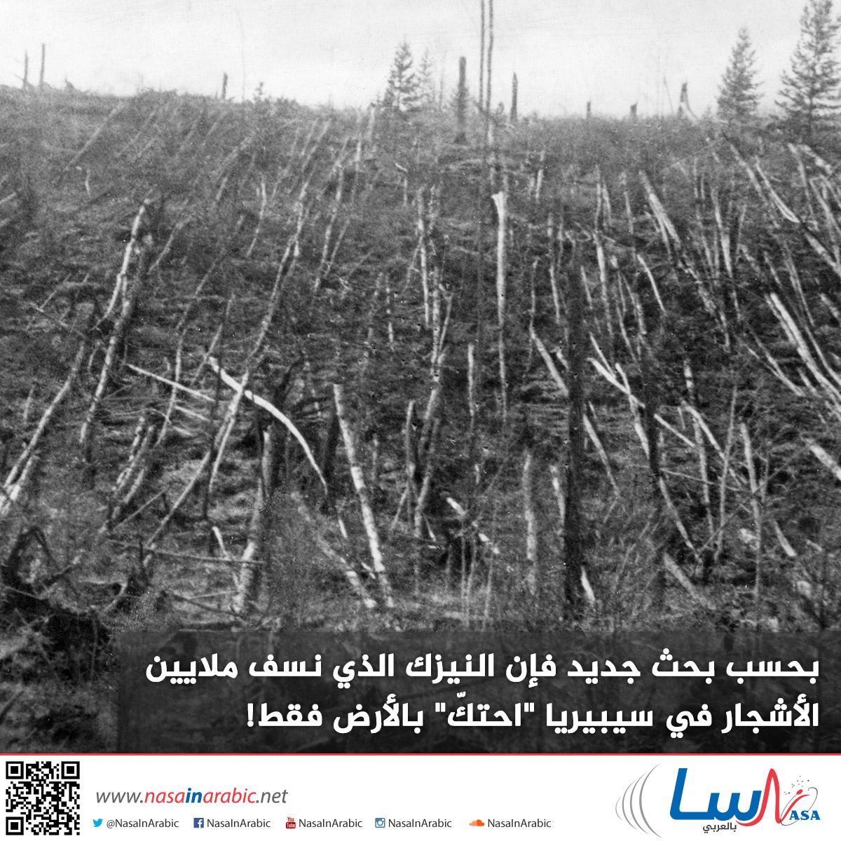 بحسب بحث جديد فإن النيزك الذي نسف ملايين الأشجار في سيبيريا قد