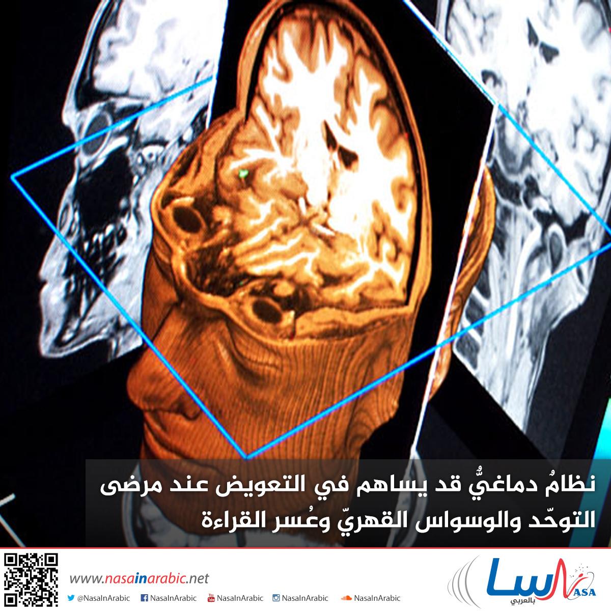 نظامٌ دماغيٌّ قد يساهم في التعويض عند مرضى التوحّد والوسواس القهريّ وعُسر القراءة