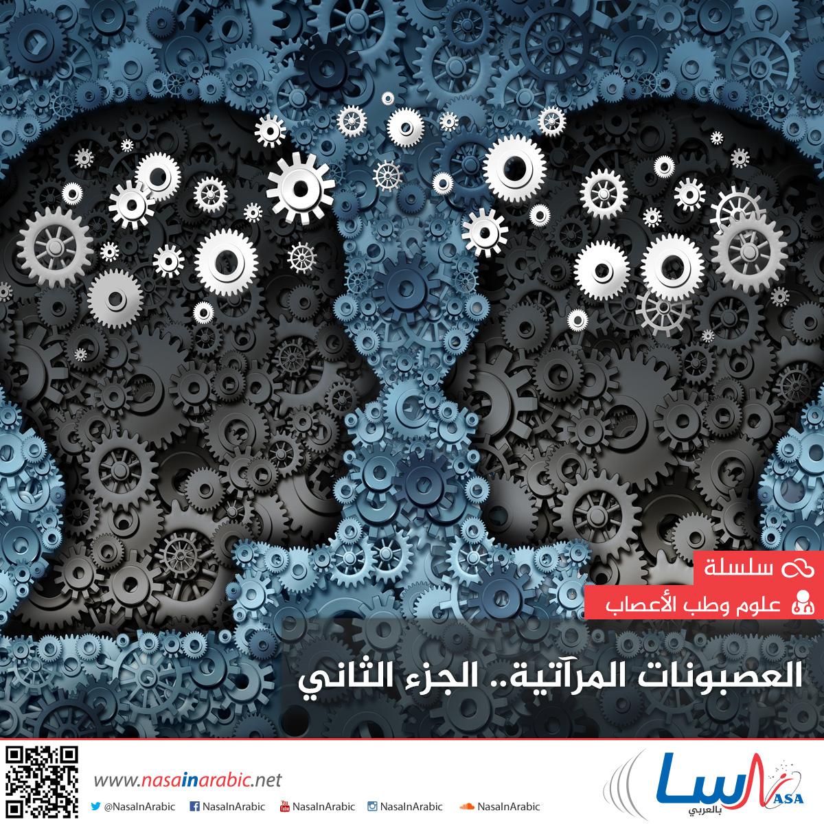 العصبونات المرآتية: تفسير فهم النوايا والتعاطف وتطور اللغة (الجزء الثاني)