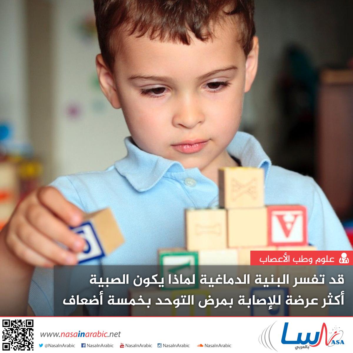 قد تفسر البنية الدماغية لماذا يكون الصبية أكثر عرضة للإصابة بمرض التوحد بخمسة أضعاف