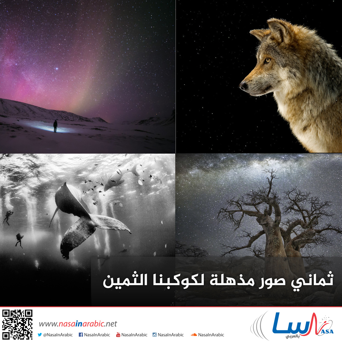 ثماني صور مذهلة لكوكبنا الثمين