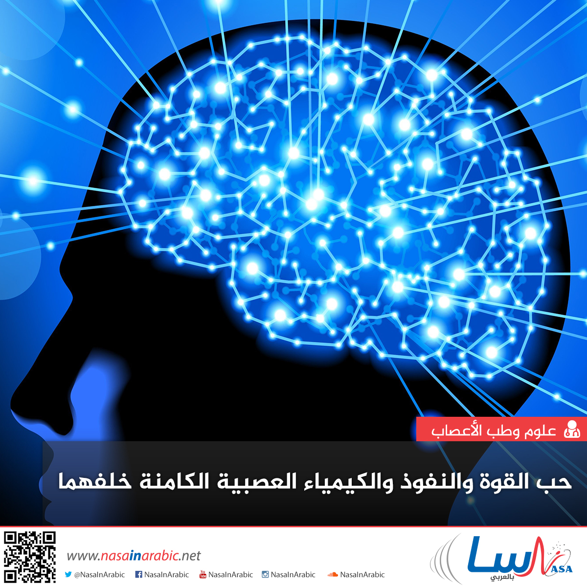 حب القوة والنفوذ والكيمياء العصبية الكامنة خلفهما