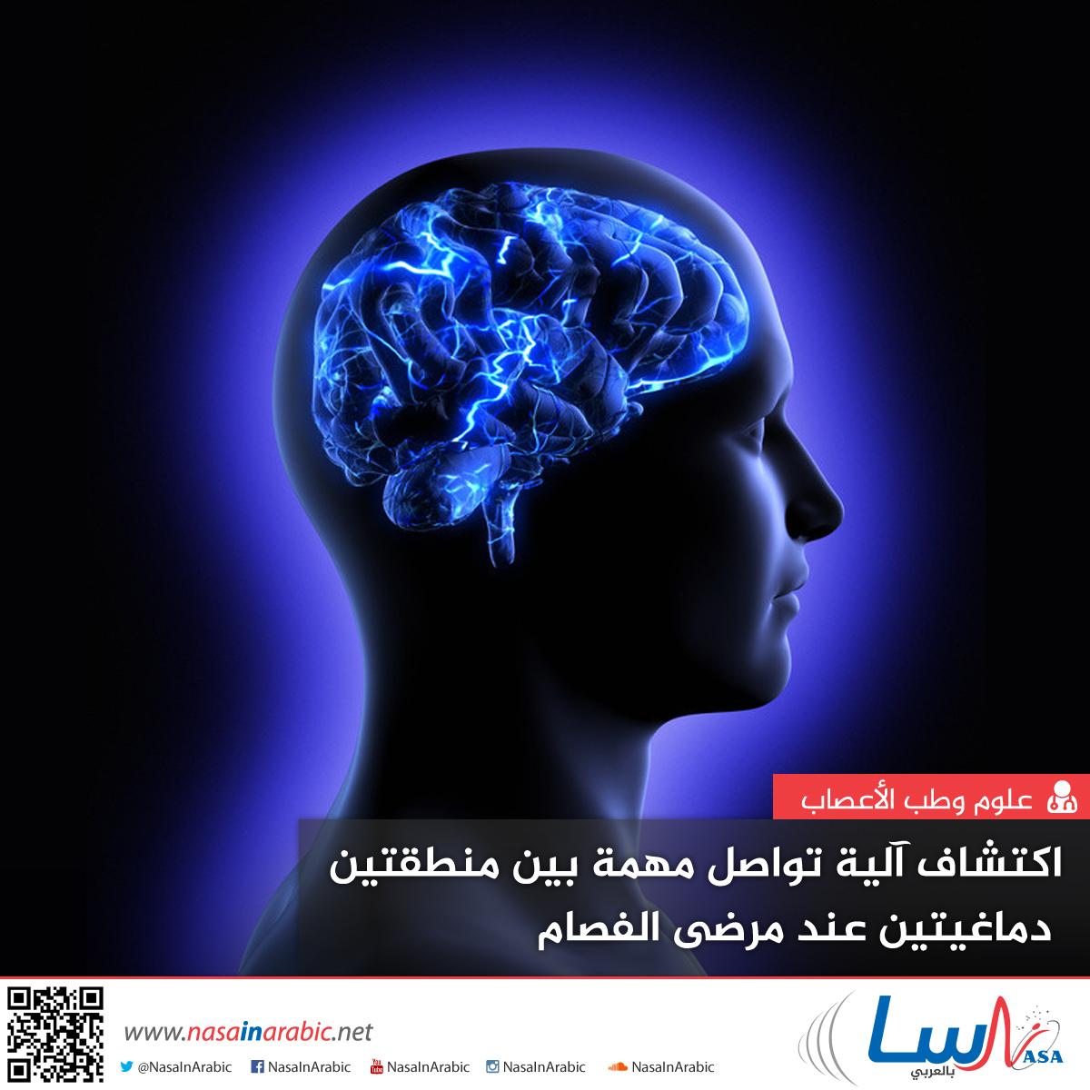 اكتشاف آلية تواصل مهمة بين منطقتين دماغيتين عند مرضى الفصام