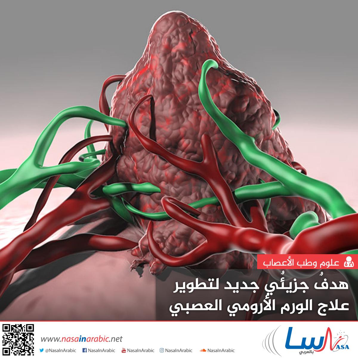هدف جزيئي جديد لتطوير علاج الورم الأرومي العصبي