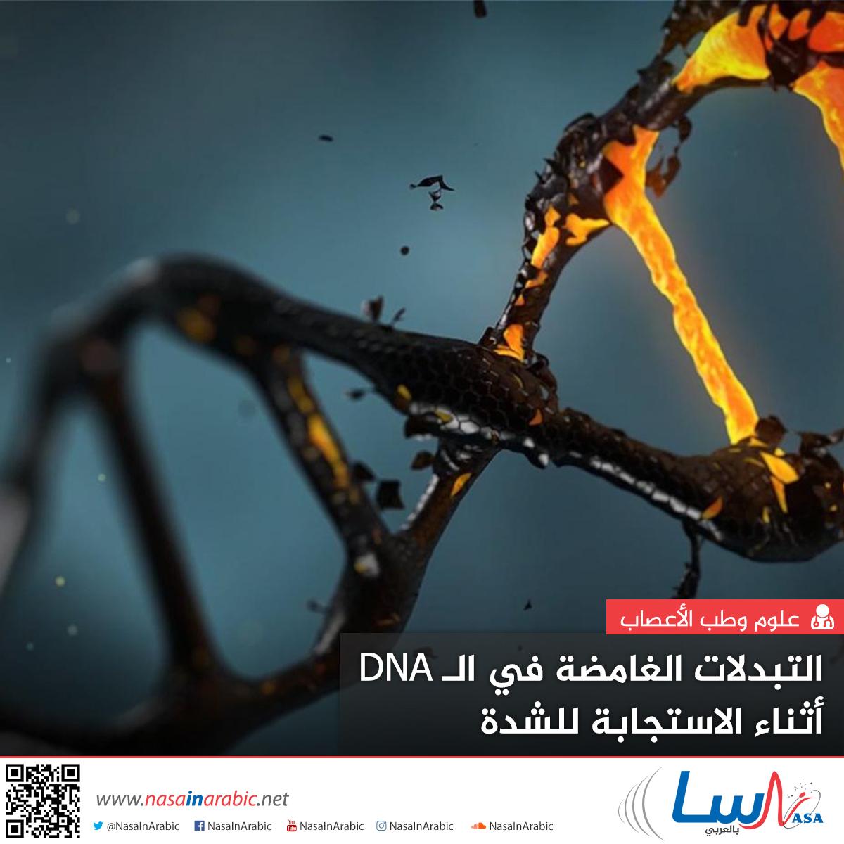 التبدلات الغامضة في الـ DNA أثناء الاستجابة للشدة