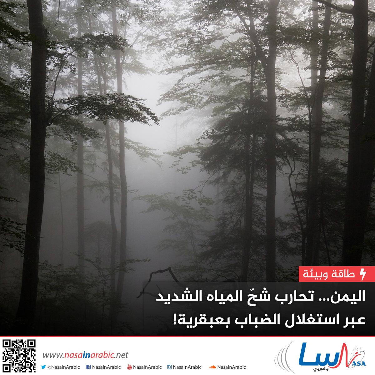 اليمن تحارب شحّ المياه الشديد عبر استغلال الضباب بعبقرية!