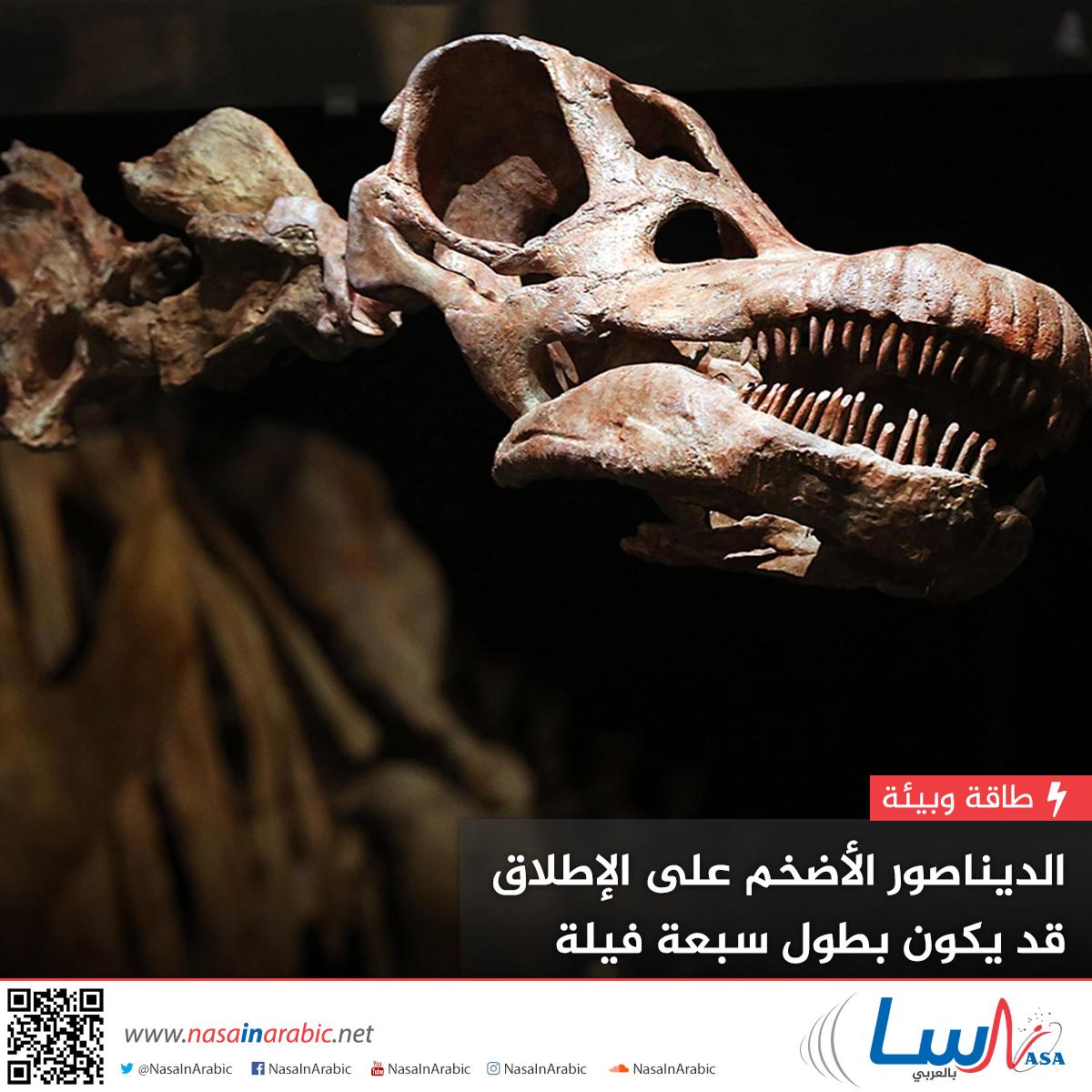 الديناصور الأضخم على الإطلاق قد يكون بطول 7 فيلة