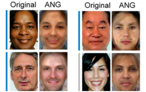 حقوق الصورة: The Journal of Neuroscience