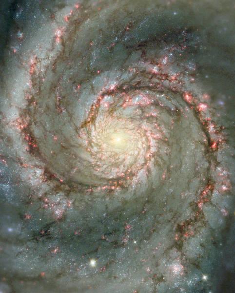 مجرة الدوامة هي مجرة حلزونية كلاسيكية. M51 واحدة من بين ألمع وأجمل المجرات في السماء، تبعدُ حوالي 30 مليون سنة ضوئية وتمتد على حوالي ستون ألف سنةٍ ضوئيةٍ وتُعرف أيضا باسم NGC 5194. تُمثل هذه الصورةُ تركيباً رقمياً لصورةٍ من التلسكوب الأرضي للمرصدِ الوطني Kitt Peak ذي القطر 0,9 متر وأخرى من الفضاء من تلسكوب هابل، وهي تُظهر مَعالِماً دقيقةً من المفترض أن تكونَ حمراءٌ جداً لكي تُرى