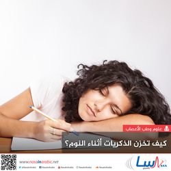 كيف تخزن الذكريات أثناء النوم؟