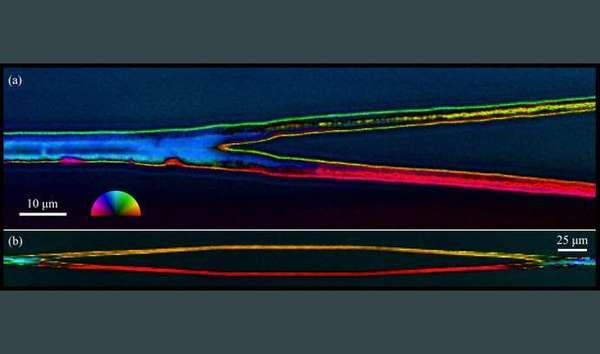 أظهرت صورة ميكروسكوب ضوئي مستقطب مفاصل كريستالية مكتوبة داخل الزجاج بواسطة ليزر الفيمتوثانية. وعند تشعبها (أ)، تتطور توجهات شبيكية مستقلة في كل فرع، ويتم حفظها (ب) عندما تعود التفرعات للاندماج في خط واحد. وتدل عجلة الألوان على زاوية المحور السريع أو البطيء للانكسار الثنائي للضوء. Credit: Lehigh University