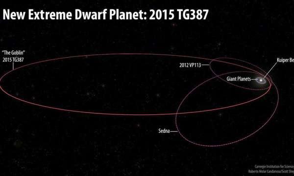 """تقارن هذه الصورة بين حجم مدارات النظام الشمسي وكوكب القزم المتطرف الجديد 2015 TG387 ورفاقه من أجسام سحابة أورت الداخلية 2012 VP113 وسيدنا Sedna. أطلق المكتشفون لقب """"العفريت- The Goblin"""" على 2015 TG387، حيث أنّ التسمية المؤقتة لها تحتوي على حرفي TG ورُصِد هذا الجسم لأول مرة قبيل عيد الهالووين. يتمتع TG387 2015 بنصف محورٍ رئيسي أكبر من VP113 2012 أو سيدنا، مما يعني أنه يسافر لمسافةٍ أبعد من الشمس في أبعد نقطة له في مداره، أي نحو 2300 وحدة فلكية.  حقوق الصورة: Roberto Molar Candanosa and Scott Sheppard, courtesy of Carnegie Institution for Science"""