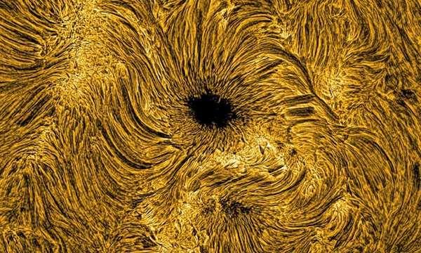منظر لبقعة شمسية على السطح الشمسي، مرئية هنا على شكل تجمع من البلازما مع مجال مغناطيسي قوته مشابهة لتلك الموجودة في آلات التصوير بالرنين المغناطيسي في المستشفيات. وبالرغم من ذلك، فإنإحجم البقعة الشمسية الذي يُقارن بحجم كوكبنا الأرض (انظر لمقياس الأرض الموجود في الجانب اليمين السفلي)، هي التي تعطيها القوة والطاقة الشديدة. العمل الحديث المنشور في مجلة Nature للفيزياء يكشف دليلًا، ولأول مرة، عن كيفية ندرة تكاثر الموجات المغناطيسية، والتي تتولد خلال مركز البقعة الشمسية، مُرشَدة تصاعديًا من سطح الشمس، يمكنها تكوين موجات صدمة تسخن البلازما المحيطة بآلاف الدرجات.  حقوق الصورة: جامعة كوين بلفاست