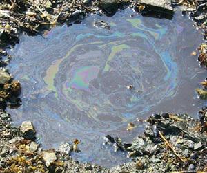 صورة من الإدارة الوطنية للمحيطات والغلاف الجوي