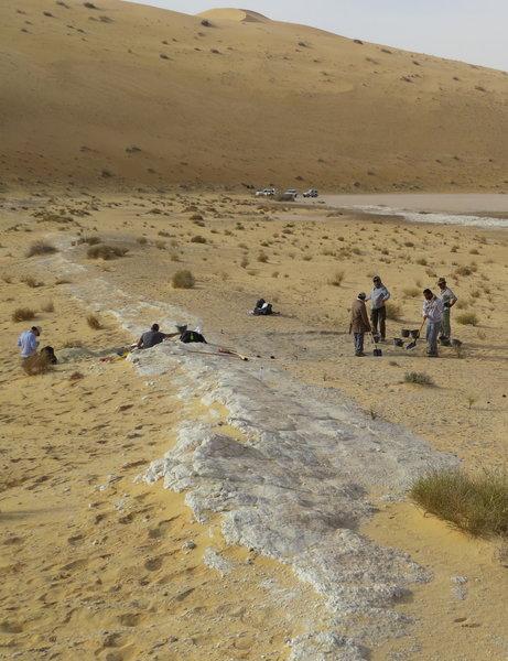 منظر من منطقة الوسطى في المملكة العربية السعودية حيث وجد علماء الآثار الإصبع الأحفوري للإنسان العاقل. تحيط الكثبان الرملية في صحراء النفوذ بقاع البحيرة القديمة (البيضاء). المصدر: Michael Petraglia