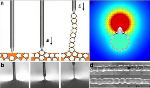 سحب الجسيمات من التشتت لتشكيل 'قلادة لؤلؤ' pearl necklace، من خلال تطبيق حقل كهربائي عن طريق قطب إبريّ الشكل.  المصدر: Ming Han