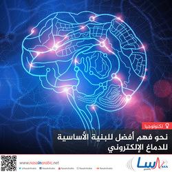 نحو فهم أفضل للبنية الأساسية للدماغ الإلكتروني
