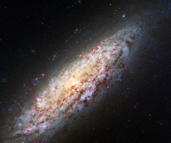 المجرة NGC 6503 صورة التليسكوب هابل التابع لوكالتي (ناسا و إيسا) للمجرة NGC 6503. تبعد هذه المجرة عنا مسافة 18 مليون سنة ضوئية تقريباً، وتقع على حافة منطقة خالية من المجرات، تسمى (الفجوة المحلية)، بصورة مثيرة للاستغراب. هذه الصورة الغنية بالألوان تضيف تفاصيلاً كثيرة لصورة أخرى لنفس المجرة.