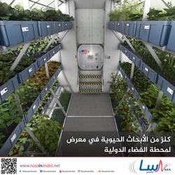 كنز من الأبحاث الحيوية في معرض لمحطة الفضاء الدولية