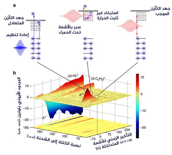 رسم تخطيطي للتجربة المصدر: MBI