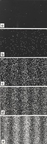 تظهر نتائج تجربة الشقين التي قام بها الدكتور تونومورا Tonomura، نمطَ التداخل المتشكل لإلكترونات مُفردة. عدد الإلكترونات في الصور هو 11 (a), 200 (b), 6000 (c), 40000 (d), 140000 (e).