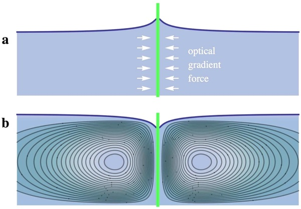 (أ) كمية حركة الضوء وفقاً لنموذج مينكوفسكي، و(ب) كمية حركة الضوء وفقاً لنموذج ابراهيم. Credit: Zhang, et al.