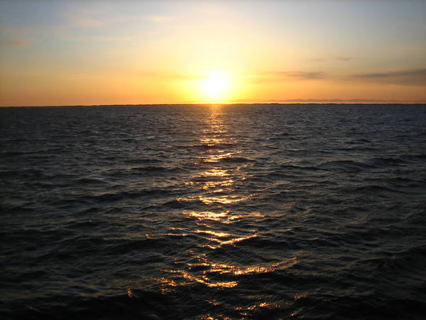 دراسة جديدة لأحدث البحوث أجرتها مؤسسات متعددة على التباطؤ المؤقت في ارتفاع معدل حرارة سطح الأرض بين عامي 1998 و2013 خلصت إلى أنه يمثل إعادة توزيع للطاقة والحرارة في المحيطات. حقوق الصورة: Flickr user Brian Richardson, CC by 2.0