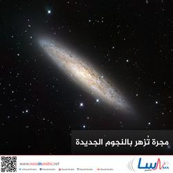 مجرة تُزهر بالنجوم الجديدة
