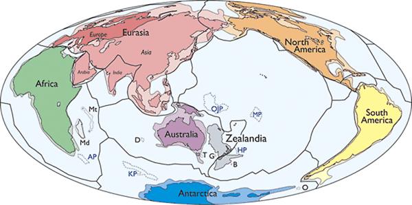 إفريقيا، شبه الجزيرة العربية، أوروبا، أسيا، أوراسيا، الهند، أستراليا، زيلانديا، أنتاركتيكا، أمريكا الشمالية، أمريكا الجنوبية حقوق الصورة: N. Mortimer et al./GSA Today