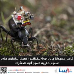 كاميرا محمولة من Gopro للخنافس: يعمل الباحثون على تصميم حقيبة كاميرا آلية للحشرات