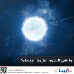 ما هي النجوم القزمة البيضاء؟